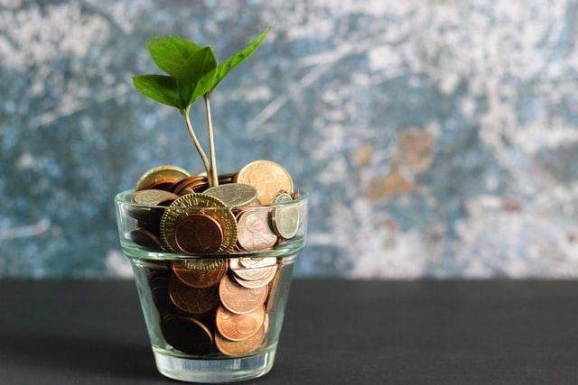 Pieniądze - brutto, netto